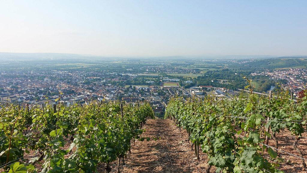 Büdesheim, Dietersheim und Münster-Sarmsheim