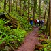 Small photo of Heading up the lower Talus Loop trail