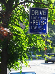 Drive like your pets live here.