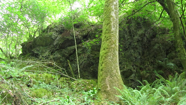 Hyner Rocks Lower Outcrops in Hyner Bottom