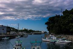 波切漁港 Nakiri Fishing port
