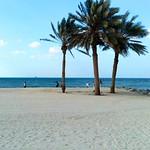28. November 2015 - 14:58 - Пляж Шарджи شاطئ الشارقة Playa de Sharjah