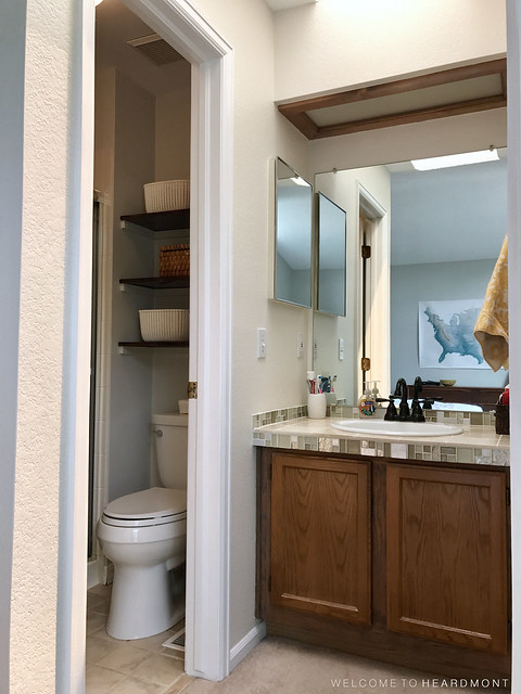 Sink and Toilet Room Before | Welcome to Heardmont