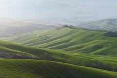 La campagna come un drappo verde - The countryside as a green drape