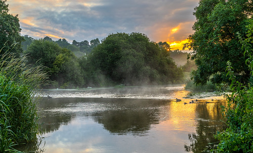 landscape river stour reflection water bird duck sun sunrise