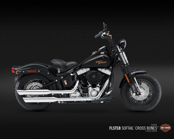 Harley-Davidson FLSTSB 1584 SOFTAIL CROSS BONES 2008 - 13