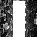 擠迫都市  Crowded apartment buildings by C. Alice
