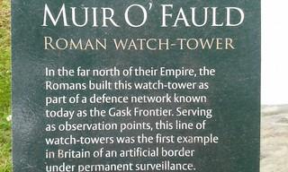 Muir o Fauld
