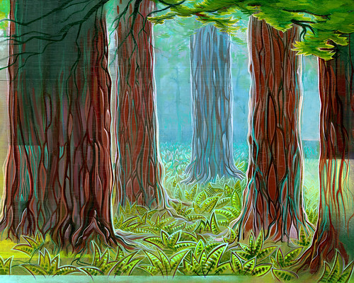 Redwoods. From our interview with surf artist Spencer Reynolds