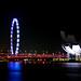 Night view of singapore Flyer, Marina Bay Singapore