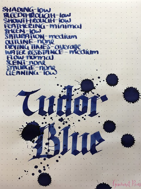 Ink Shot Review Diamine Anniversary Tudor Blue @AppelboomLaren 7