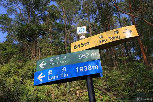 Devil's Peak - Wilson Trail