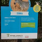 zoo lego-41