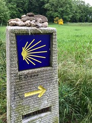 Camino de Santiago (Way of St. James)