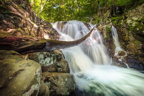 appalachian cascades shenandoah landscape virginia water nature scenic mountains fern park nationalpark stream longexposure rocks syria unitedstates us