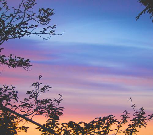 2015 sunset