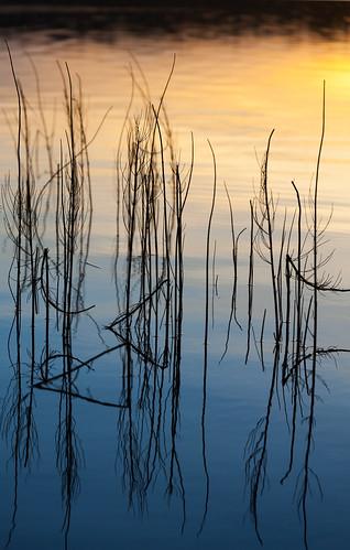 kascvi kesä luonto pitkäjärvi auringonlasku ilta reflection outdoor järvi aurinko evening lake nature sun sundown sunset twilight espoo