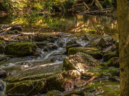smack53 waywayandastatepark waywayanda vernon newjersey summer summertime statepark newjerseystatepark water stream brook canon powershot g12 canonpowershotg12