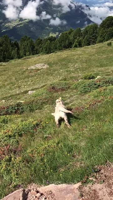 Xena nelle Dolomiti