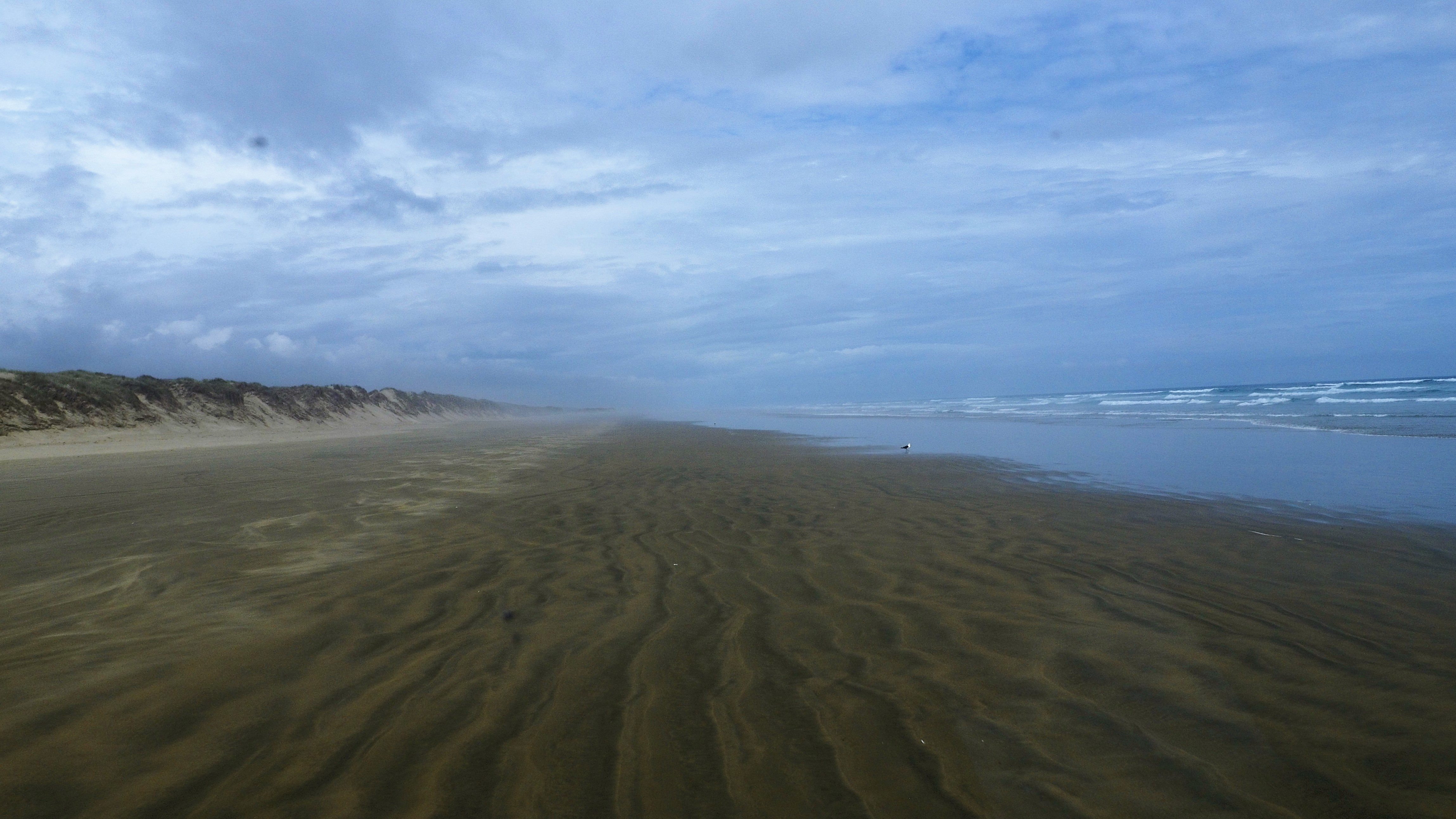 90_Mile_Beach_NZ