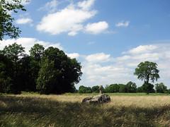 Le menhir christianisé de Bougettin près de Dingé - Ille-et-Vilaine - Juin 2017 - 02