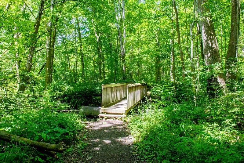 Lonidaw Nature Preserve - June 21, 2017