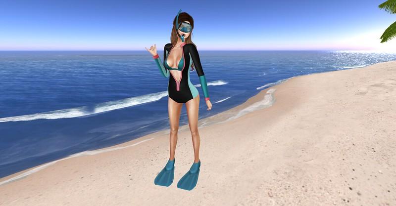 Gone Snorkeling !
