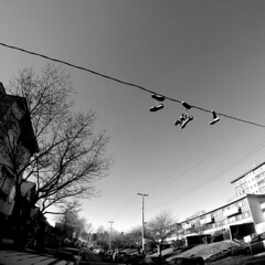 Strathcona Shoes on Wire