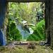 window to nature por ikarusmedia