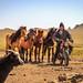 mongolia 2017-084.jpg by vzrjvy