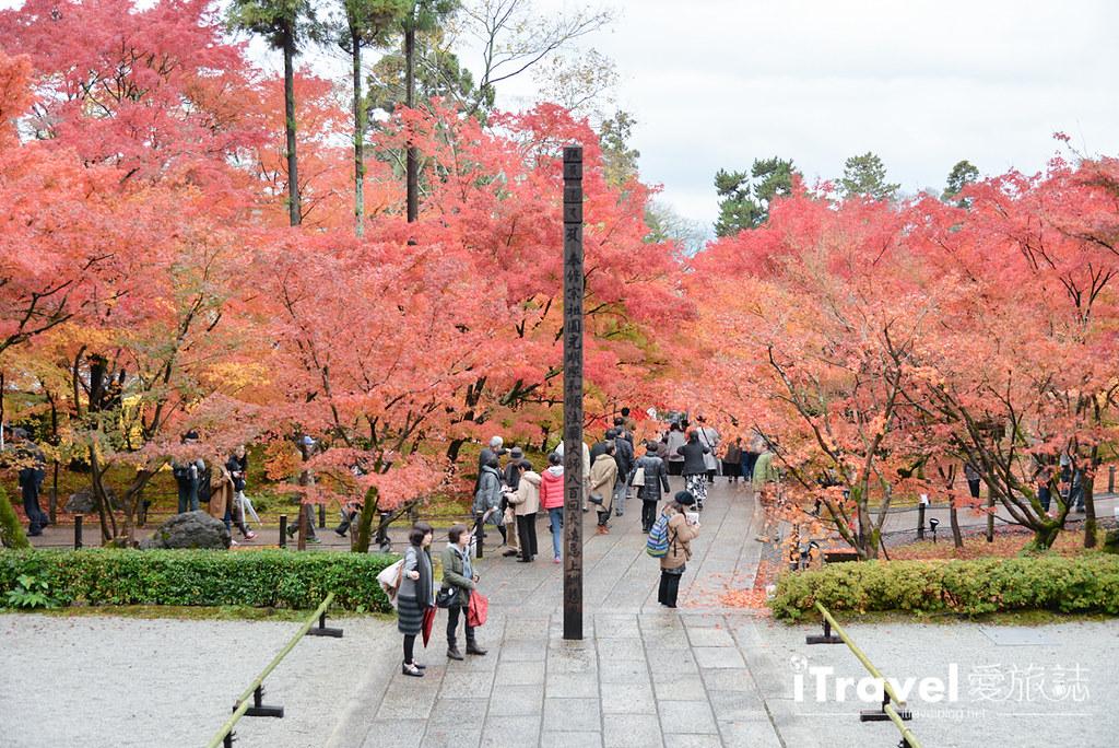 京都赏枫景点 永观堂 (28)