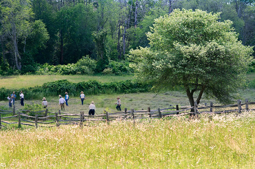 farm field workers grass harvest trees sunlight woods osv osvorg sturbridge village fence landscape hay chancyrendezvous