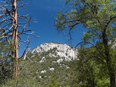 Idyllwild: views from Ernie Maxwell Scenic Trail