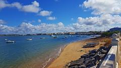 Isla Cristina y Marismas de Huelva 20170503-12