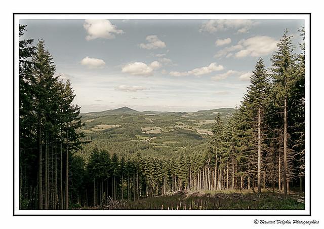 Paysage du Haut Beaujolais