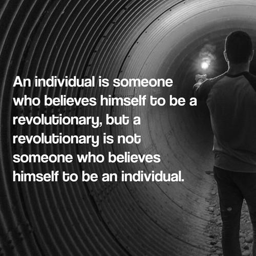 revolutionary individual
