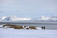 Svalbard aboard the M/S Stockholm
