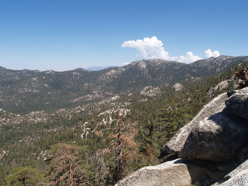 Looking north toward Fuller Ridge from the Marion Mountain Trail, with San Bernardino Peak in the distance