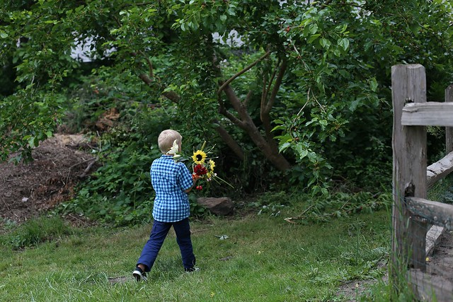 bringing flowers to the mulberry bush