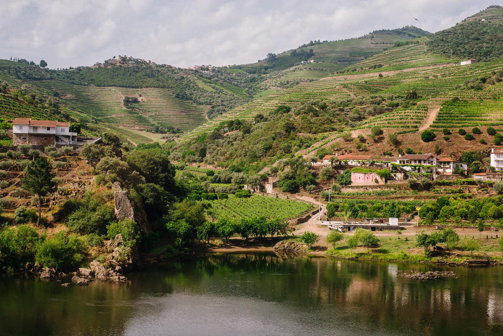 Douro-völgye a vonatról és a teraszosan művelt szőlő.