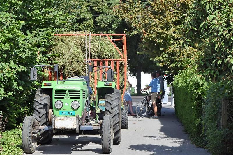 Hay harvest 08.07 (1)