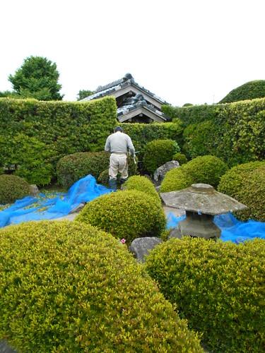 jp-chiran-jardin4 (5)