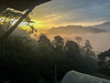 Early morning mist in tropical amazon rainforest landscape in Ecuador
