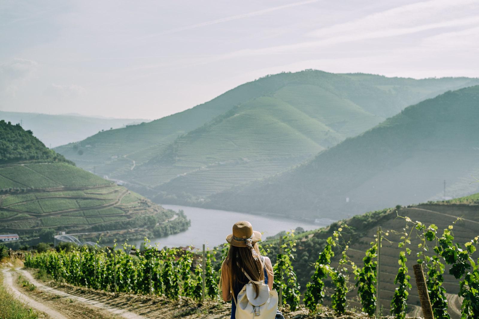 Pinhao szőlőbirtok Portugália