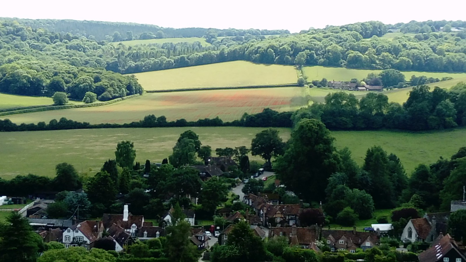 Turville and poppy-filled field beyond, from Cobstone Hill SWC Walk 223 Henley-on-Thames Circular (via Turville)
