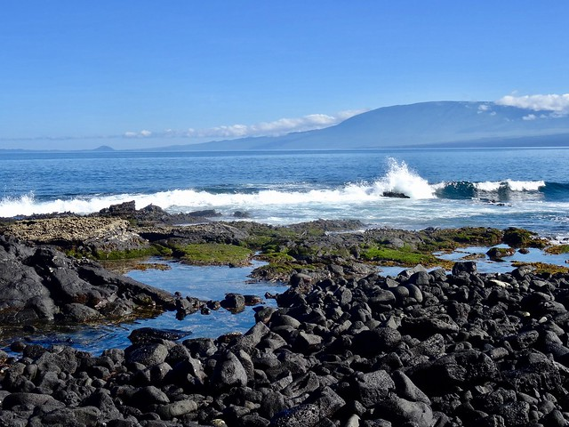 Fernandina, Galapagos, Sony DSC-HX50V