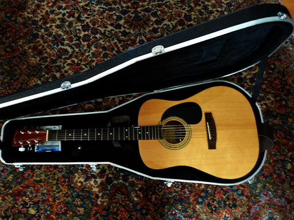 Zager Guitars, Panasonic DMC-ZS7