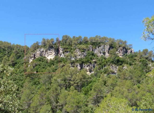 El PLa de Manlleu - Sector La vall de L'Infern -06- Subsector Can Llepaculs 02 (02-07-2017)