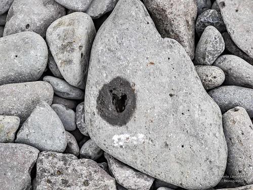 Herz im Stein