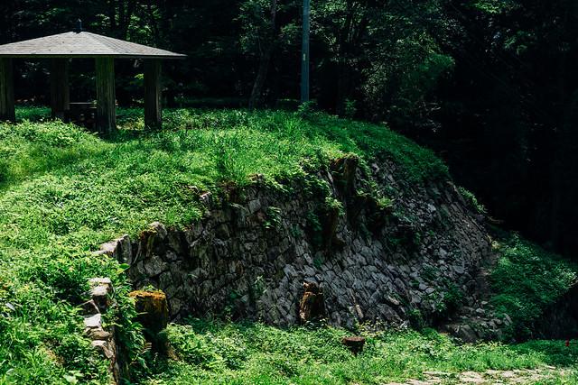 Iwamura_02_55mm